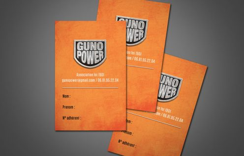Guno-Power-party