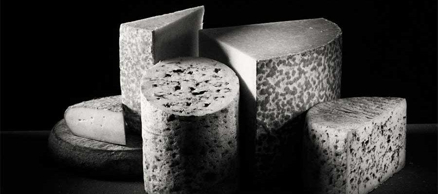 Les meilleurs fromages d'Auvergne au Concours Général Agricole