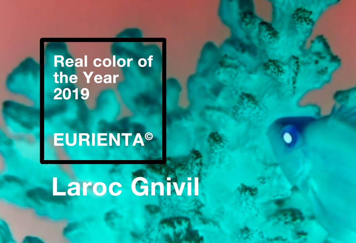 The Real Color Of The Year 2019 - Laroc Gnivil